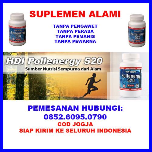 jual suplemen untuk tenaga lelaki 0852 6095 0790 jual vitamin